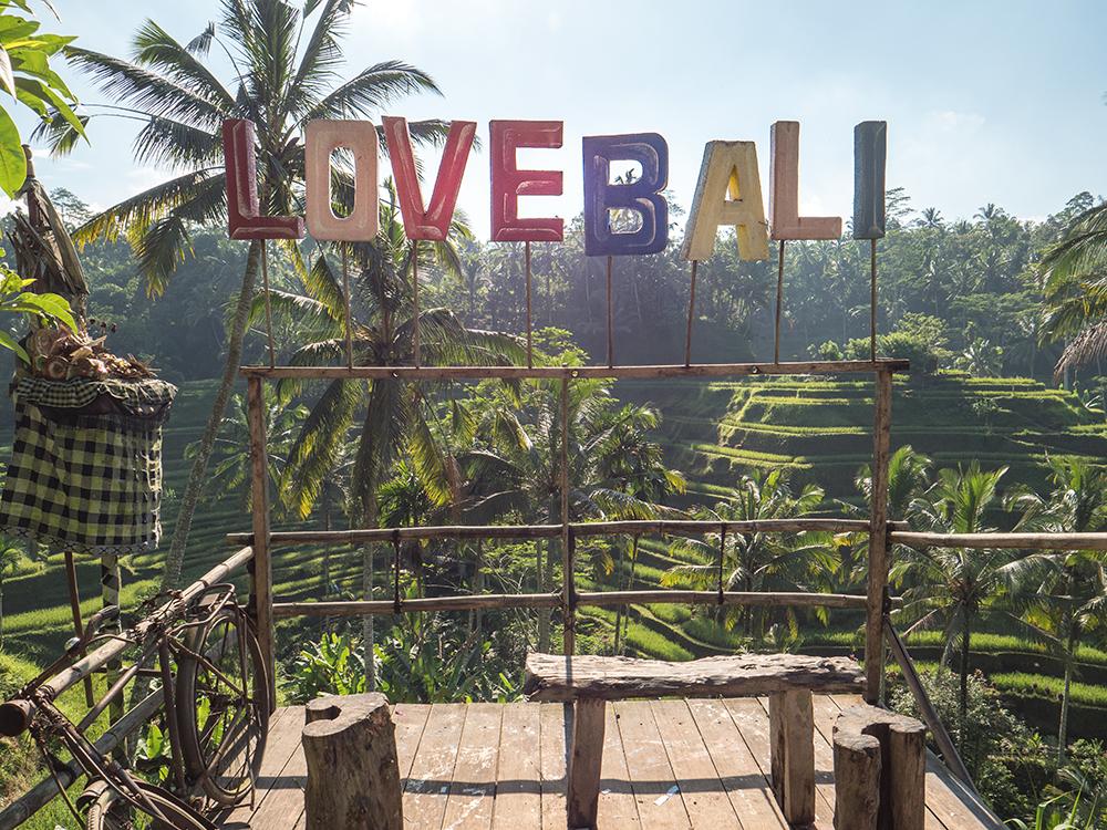 Ubud Tegalalang Rice field reisefeld bali